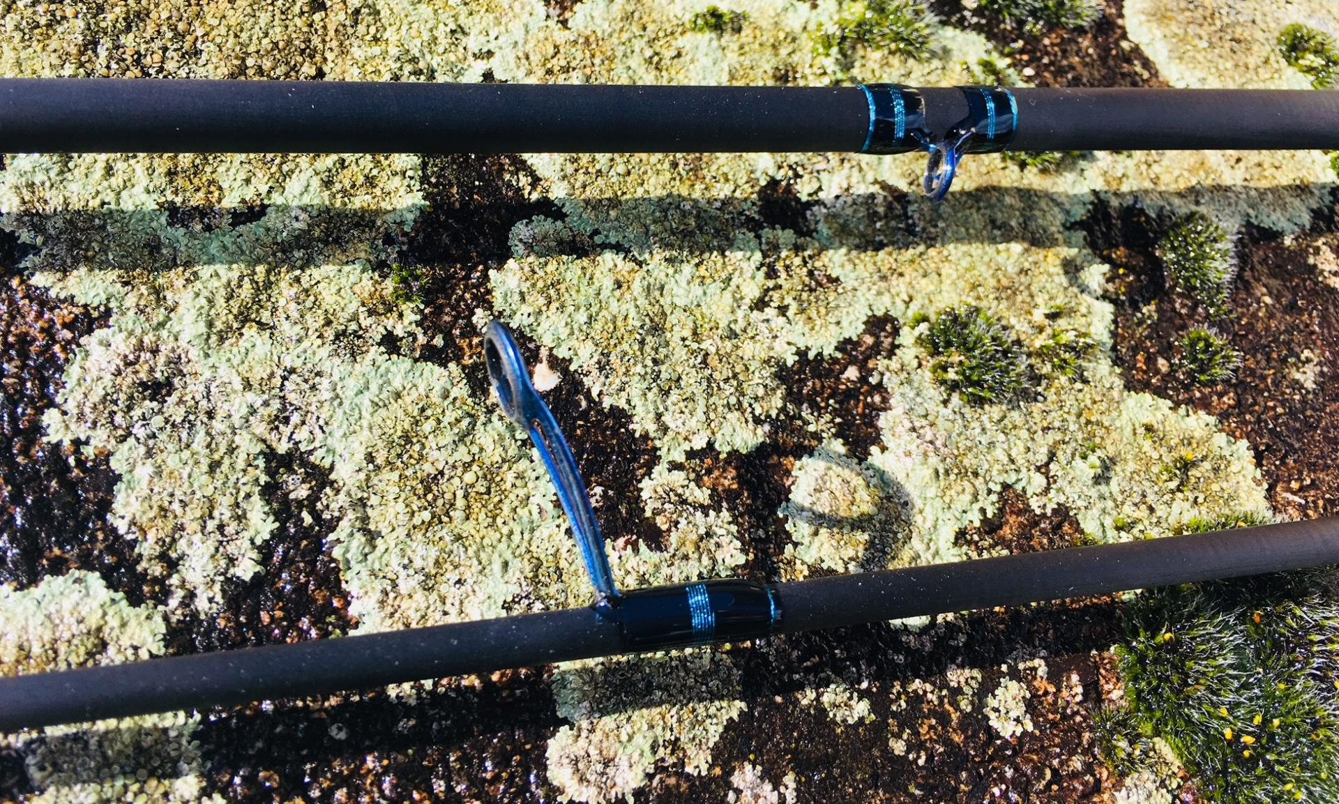 Anneaux Fuji Torzite Titanium anodisés bleu